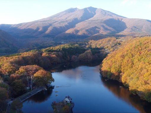 Four Seasons of TOHOKU